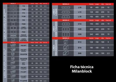 ficha-1b